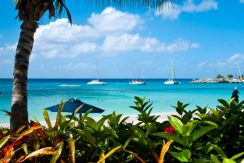 Port St Charles 167 long term rentals Barbados