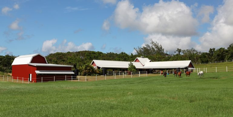 Stables & Barn